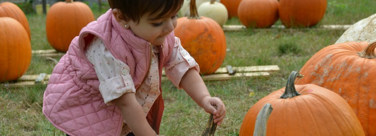 Zoe Picking a pumpkin in Carleton Place