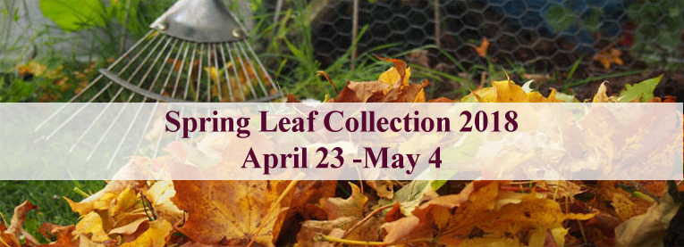 Banner for Spring Leaf Collection - April 23 to May 4